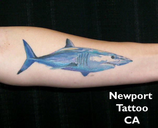 Mako shark kareem masarani flickr for Facts about tattoos
