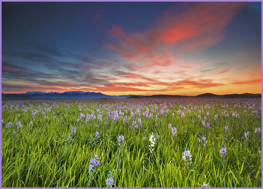 Sunrise at Camas Prairie Centennial Park and Red Sky | Flickr