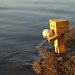 Danbo puts the shell in the water