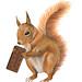 Mister squirrel.