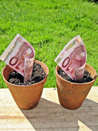 10 Euro Notes in Plant Pots | by Images_of_Money