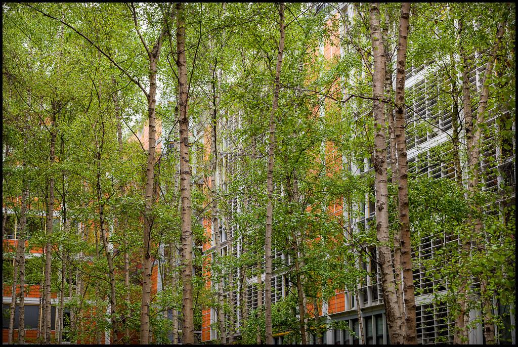 Courtyard rue de meaux low budget apartment complex for Garage rue de meaux vaujours