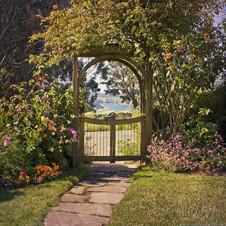 Garden Glimpse, Mendocino Cafe / Rita Crane Photography | by Rita Crane Photography