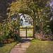 Garden Glimpse, Mendocino Cafe / Rita Crane Photography