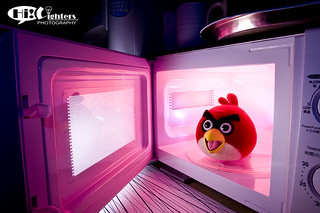 Angry Bird in Microwave | by hilighters