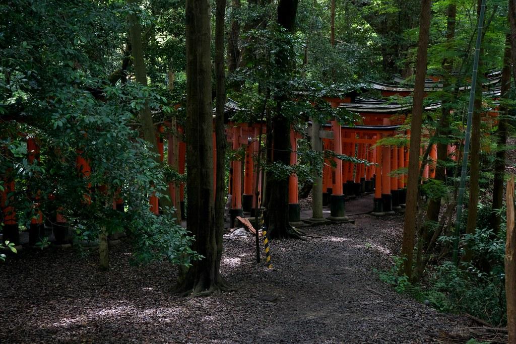 Fushimi Inari_17