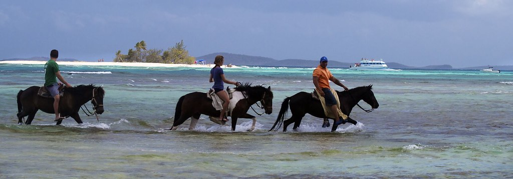 Horseback Riding On The Big Island Of Hawaii Highest Rating