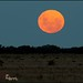Super Moon 6th May 2012