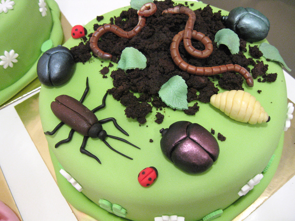 Bug Themed Birthday Cake