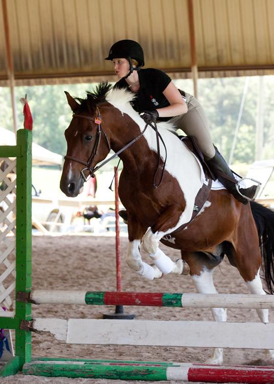El Gezira Hunter Jumper Equestrian Event Show Jumping