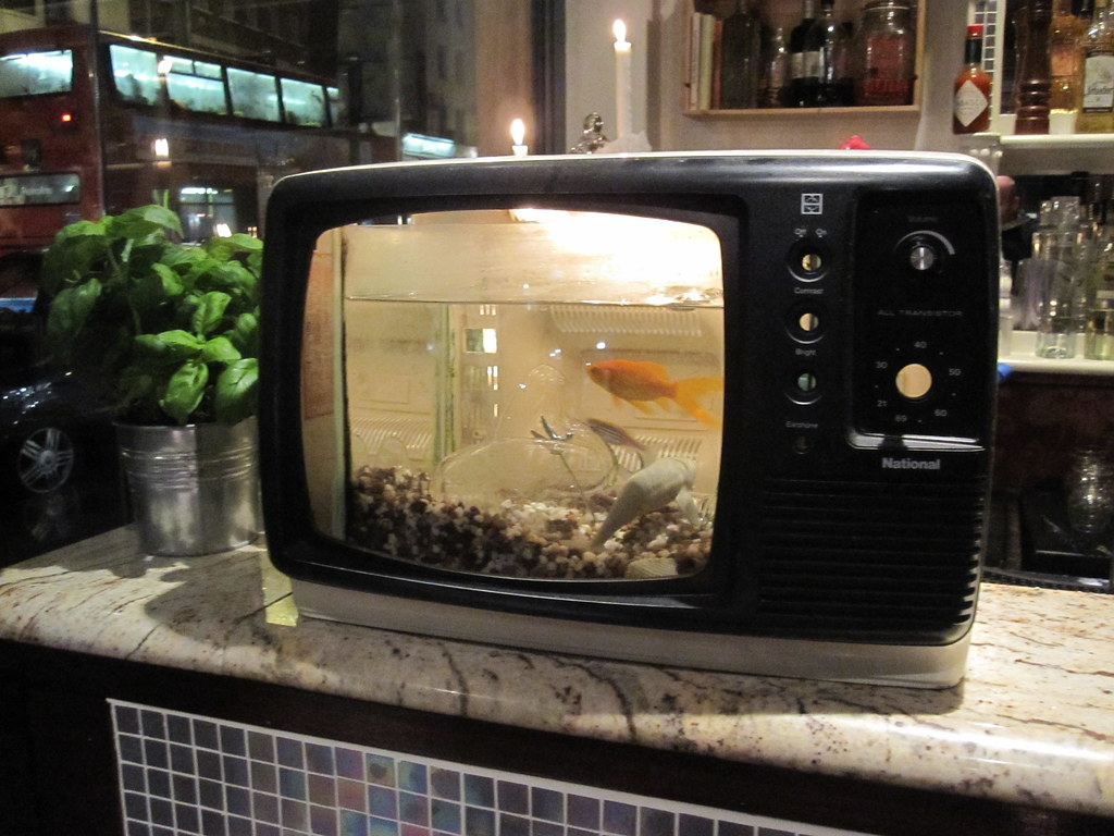 Fish Tank Tv In A London Pub I Thought That This Was The