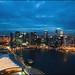 Marina Bay Sands Skypark: Pay-per-View