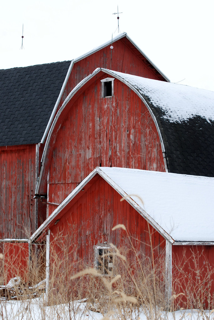 3gs three types of barns three different roofs shirl for Barn roof types