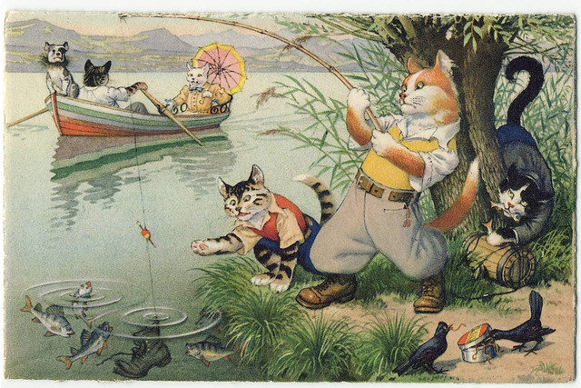 mainzer cats fishing flickr photo sharing