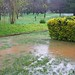 our_lake
