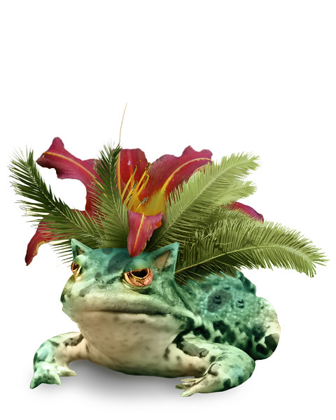 Venusaur in real life