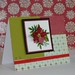 Christmas cards 20100020