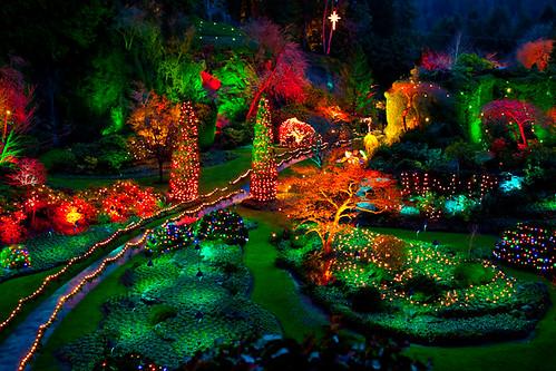 Butchart gardens at night flickr photo sharing for Jardines butchart
