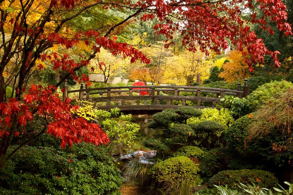 Japan Japan Gardens