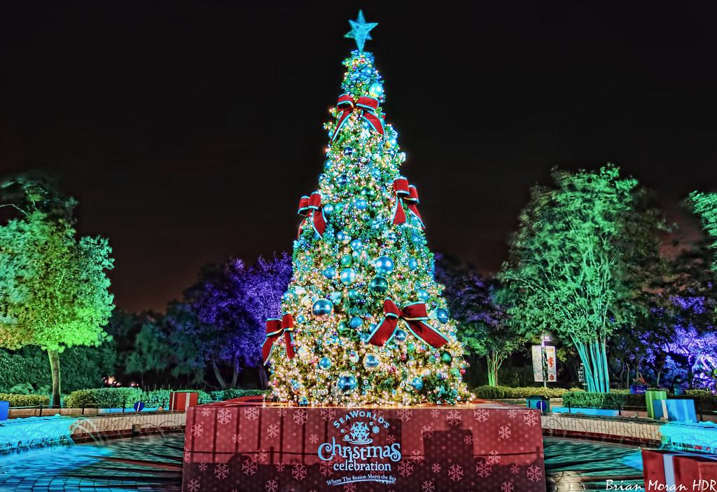 Image for Christmas Celebration San Diego
