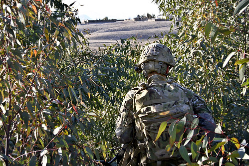 Through the brush | by The U.S. Army