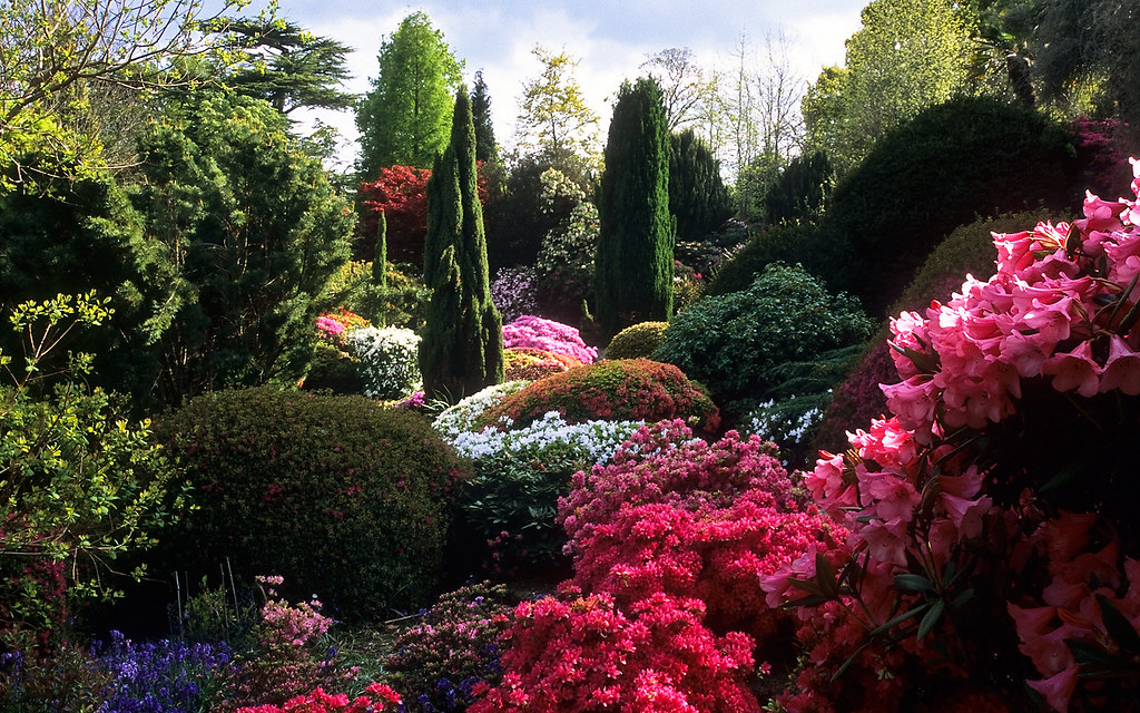 Leonardslee Gardens West Sussex England Leonardslee Ro