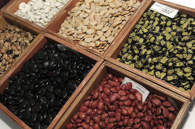 crop variety improvement Introduction to crop variety improvement introduction to crop variety improvement the development of improved, fertilizer-responsive high-yielding varieties of wheat and rice during the early 1960s and their widespread adoptions by farmers, first in asia and then in latin america, marked the beginning of what is known as the green revolution.