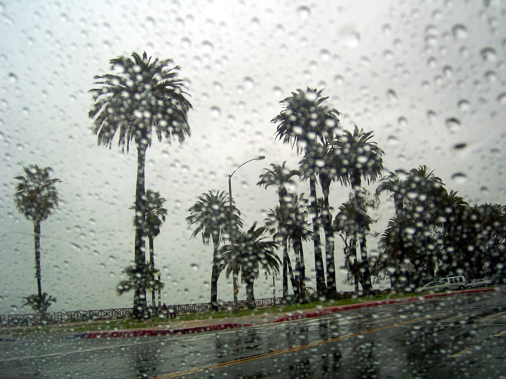 Another Day In Rainy L A