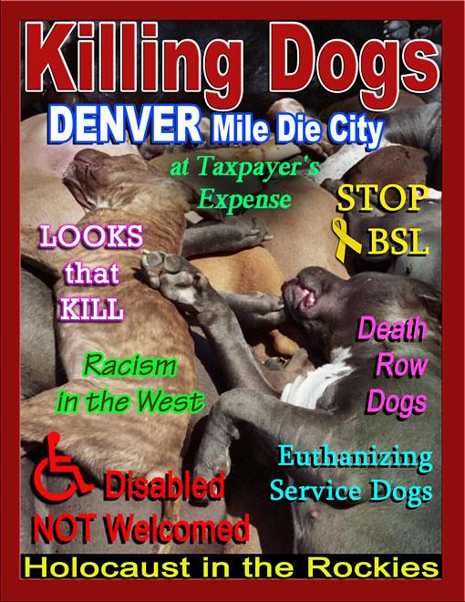Service Dogs Denver