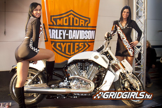 Watch as well 5530145296 moreover Top 10 Expensive Motorcycles World together with 2015 Custom West Coast Choppers Cfl Bach Built Choppers in addition Braces 17334205. on harley davidson motor company