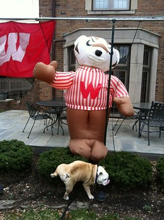 If you live in Indy and you put this garbage in your yard, well, you've got it coming. #godawgs | by ButlerBlue2