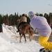 Petrus Koskinen - Horse riding