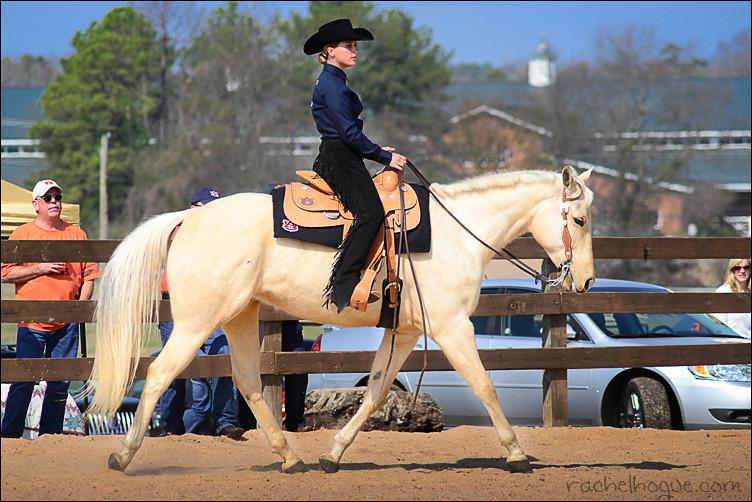 Western Horsemanship Auburn University Equestrian Team