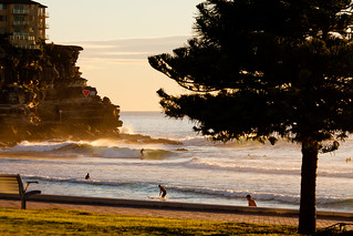 Manly Morning Surf | by coastalcreature