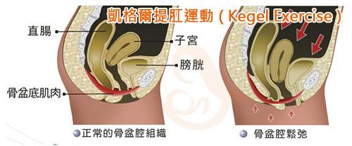 What are kegel exercise balls ndash the nen wa magnetic kegel balls - 3 10