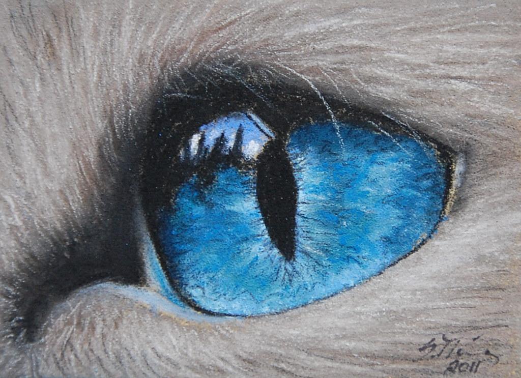 Blue Cats Eye Orb