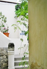Pangea garden stairway