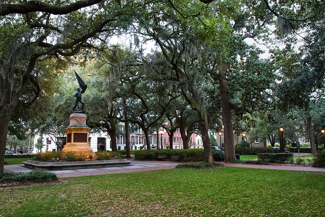 A Savannah Landscape