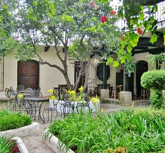 Pangea courtyard