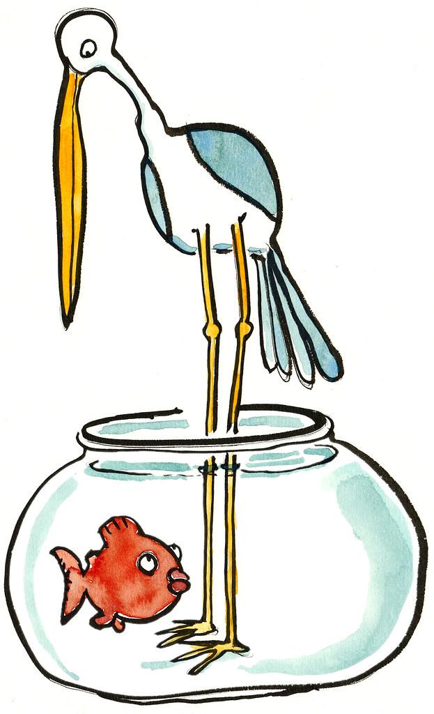 fish bird fishbowl illustration fritsahlefeldt com cartoon fish clipart cartoon fish clipart free