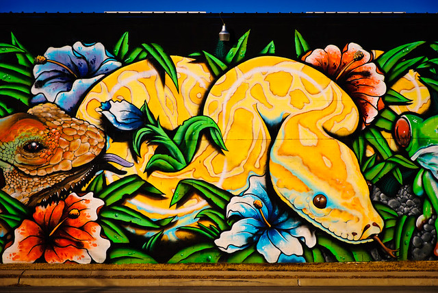 Exotic pet store mural 2 flickr photo sharing for Austin frog mural