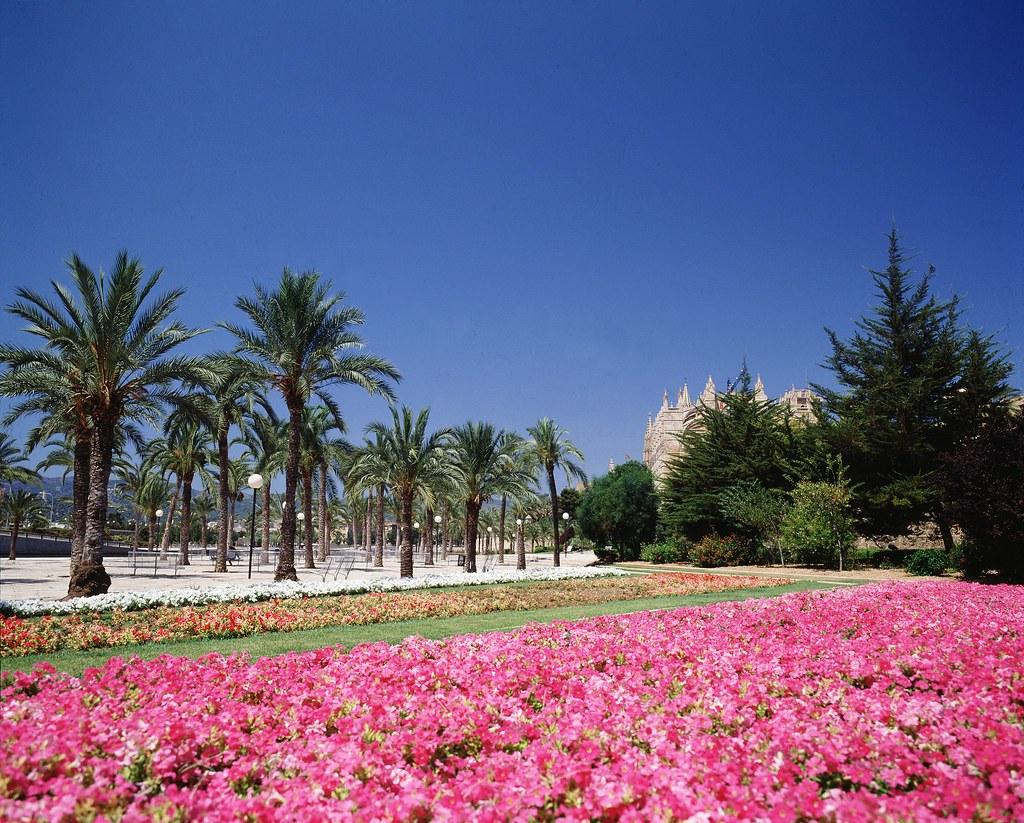 Jardines del parc de la mar palma de mallorca pc 1070 for Jardines mallorca