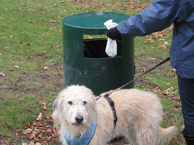Dog Poop Food Recycling