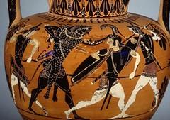 8. Héraklès et Amazones
