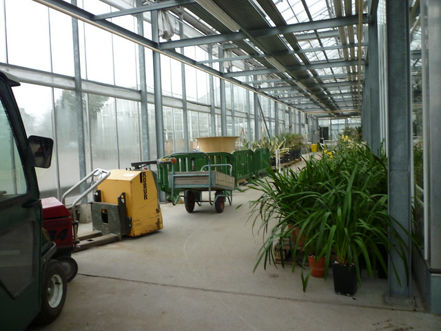 Tropical World Nursery Boynton Beach Fl