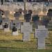 Soldatenfriedhof (48°08' N 16°26' E)