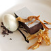 chocolate ganache with parsnip ice cream
