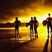 sunset surf lifesavers 5