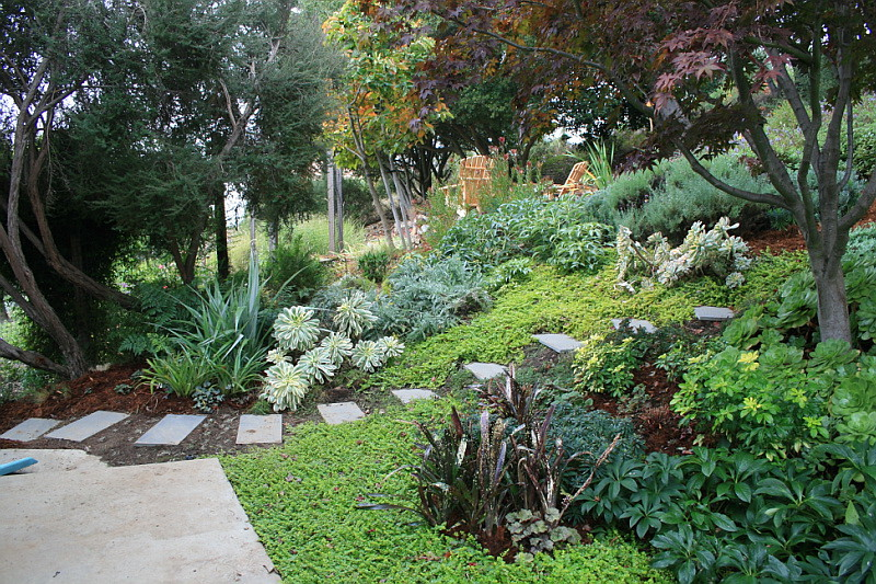 Slate Steps Up Garden Slope With Lots Of Foliage Color Ac