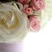 Roses in Tulle Vase